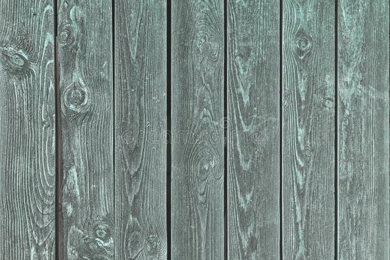 Fondo dei bordi anziani verdi Fondo in bianco per le disposizioni immagini stock