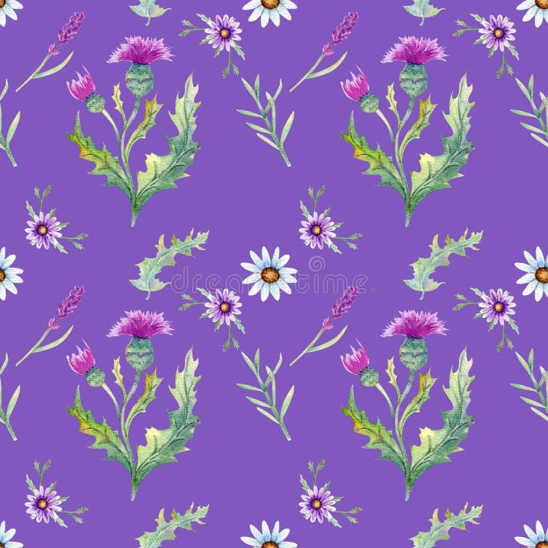 Fondo dei fiori selvaggi royalty illustrazione gratis