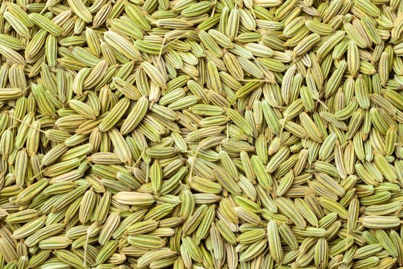 Fondo dei semi di finocchio secchi, vista superiore dell'alimento immagine stock
