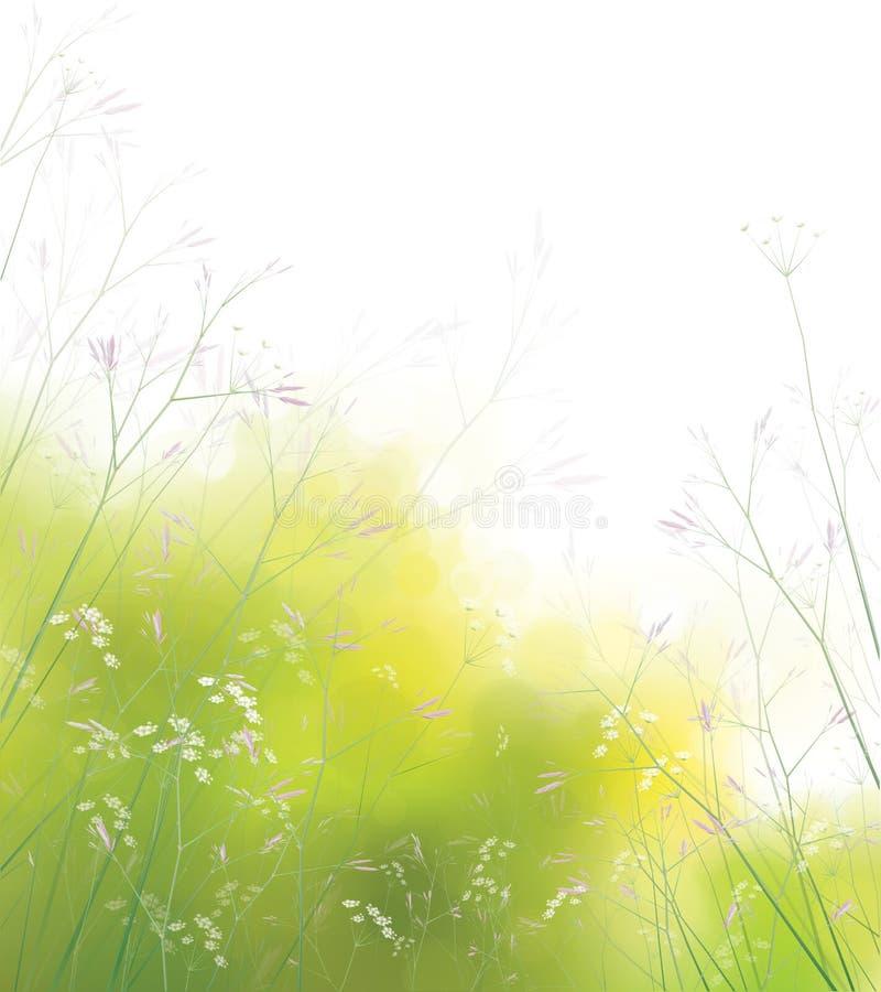 Fondo dei wildflowers di vettore. illustrazione vettoriale