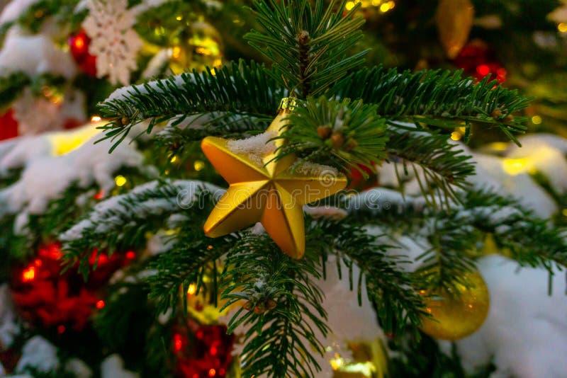 Fondo del árbol de navidad de la estrella de la Navidad del oro de luces de-enfocadas con el árbol adornado imagenes de archivo