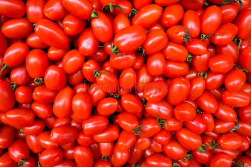 Fondo del alimento modelo de la opinión superior de los tomates de cereza del ciruelo fotos de archivo libres de regalías