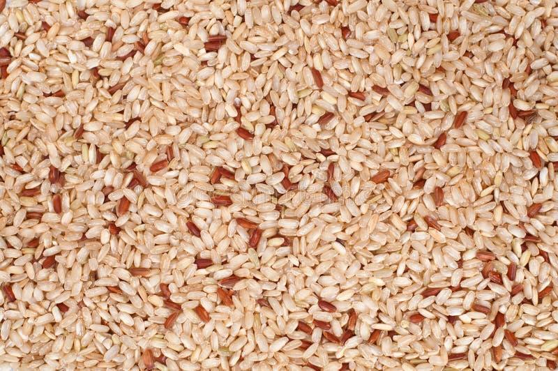Fondo del arroz moreno foto de archivo libre de regalías