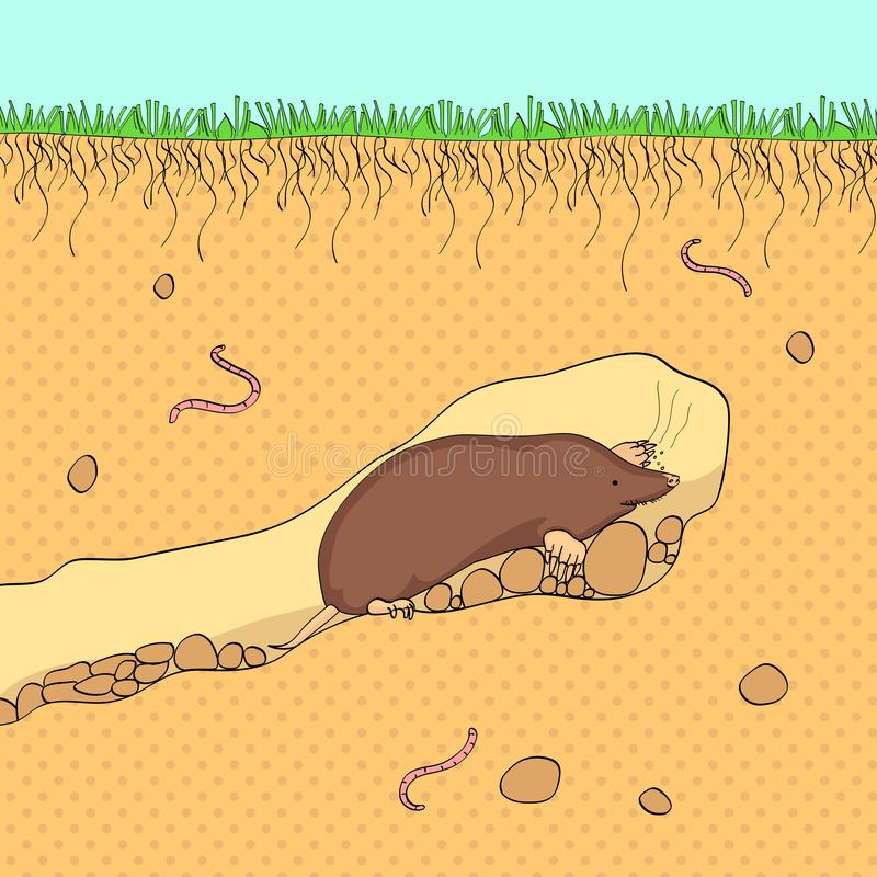 Fondo del arte pop El vector cortó la sección de la tierra con el cielo azul, la hierba, el suelo subterráneo con suciedad, el fa ilustración del vector