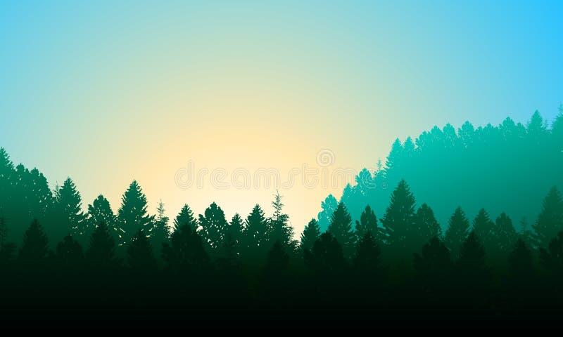 Fondo del bosque de la mañana con los pinos, el cielo y el sol stock de ilustración
