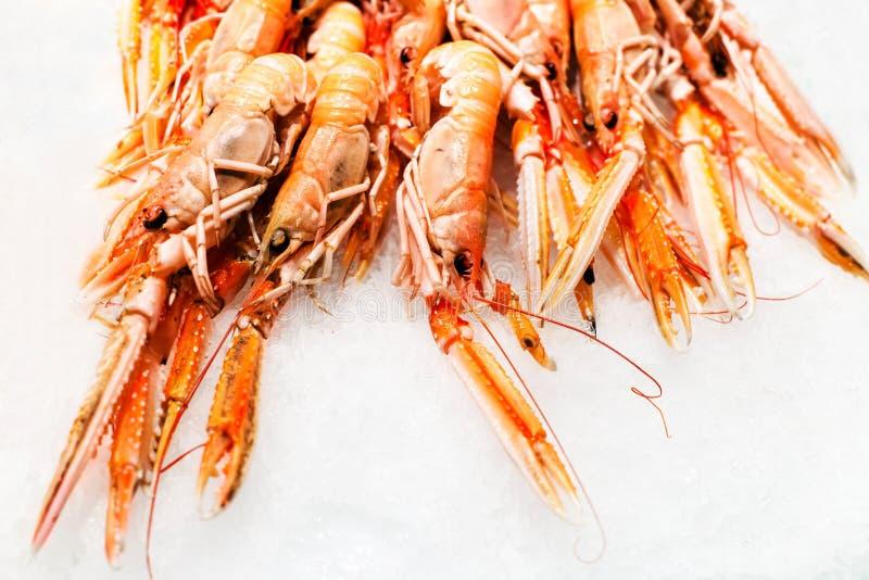 Fondo del cóctel de camarón sobre el hielo blanco en clos de una parada del mercado fotografía de archivo