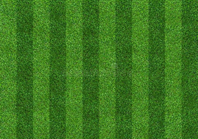 Fondo del campo de hierba verde para los deportes del fútbol y del fútbol Fondo verde del modelo y de la textura del césped Prime imagenes de archivo