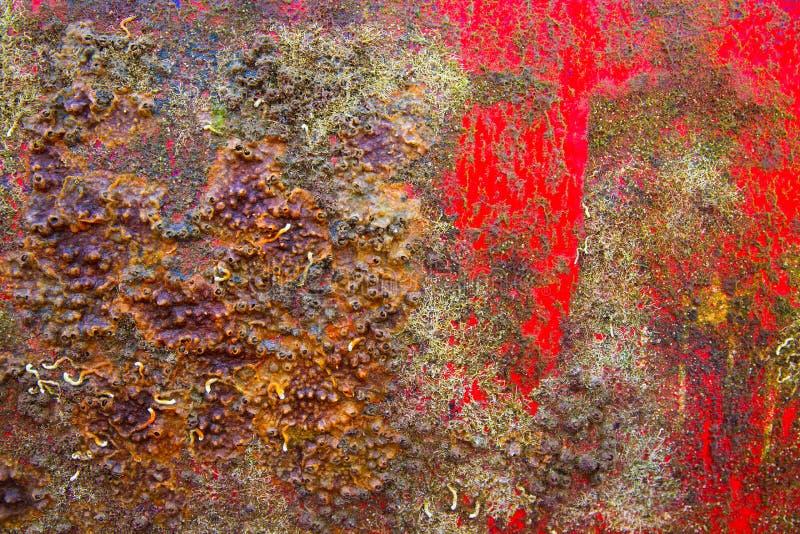 Fondo del casco del barco del Grunge en rojo y oxidado imagenes de archivo