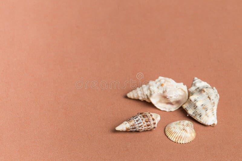 Fondo del color del concepto de la playa imagenes de archivo