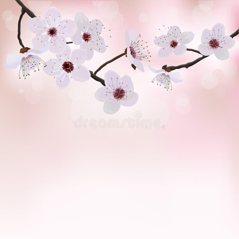 Fondo dell'albero del fiore illustrazione vettoriale