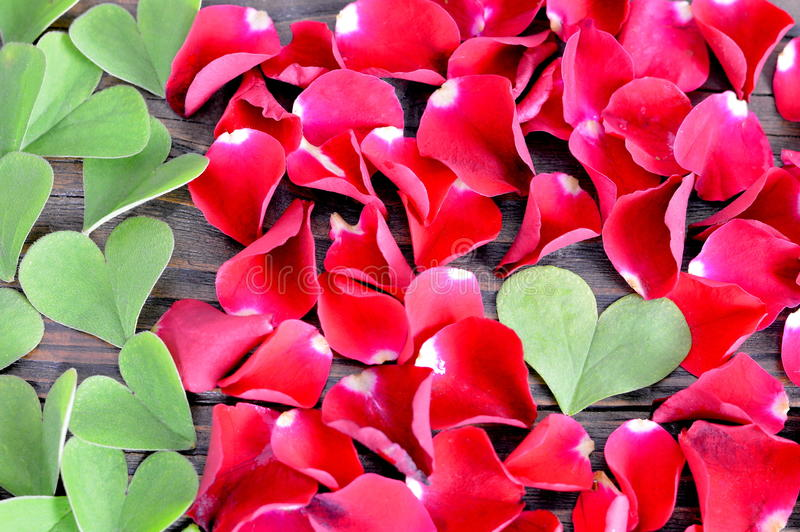 Fondo Del Día De Tarjetas Del Día De San Valentín: Hojas En Forma De ...