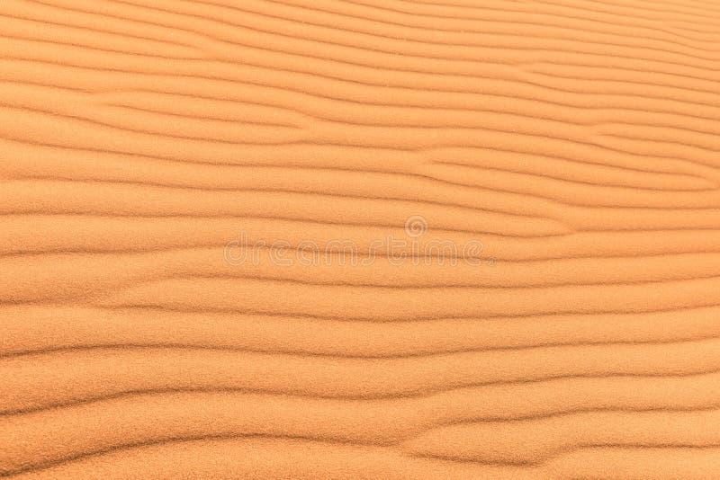 Fondo del deserto della sabbia con l 39 ondulazione del vento for Colore vento di sabbia deserto