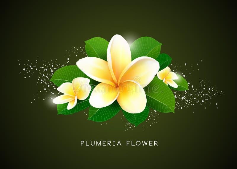 Fondo del diseño de la flor y de la hoja del Plumeria del vector stock de ilustración
