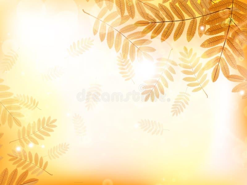 Fondo del diseño del otoño con las hojas libre illustration