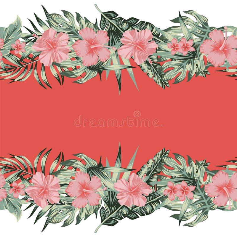 Fondo del espejo de la frontera de las hojas de palma del monstera del plumeria del hibisco stock de ilustración