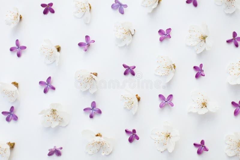 Fondo del estampado de flores stock de ilustración