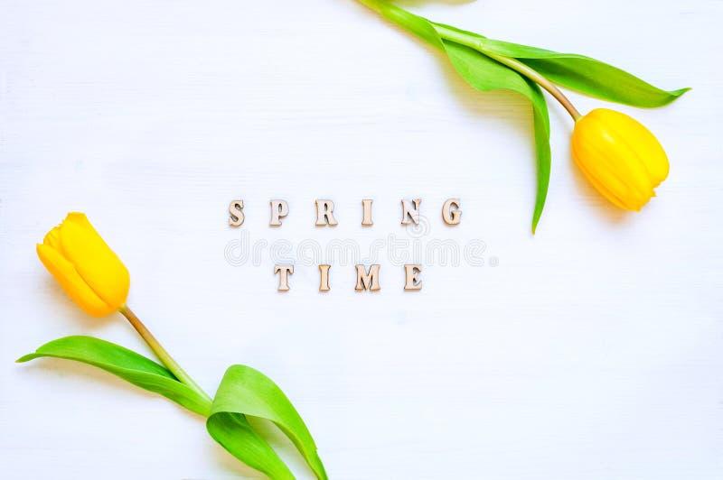 Fondo del fiore della primavera - fiori gialli del tulipano e tempo di primavera di legno dell'iscrizione sui precedenti bianchi fotografie stock libere da diritti