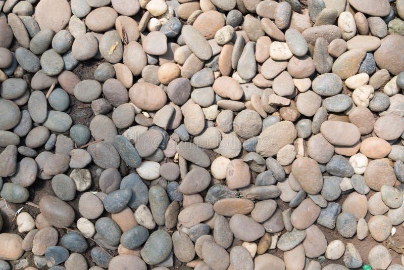 Fondo del guijarro de la piedra decorativa jard n redondo de la textura de la grava imagen de - Grava para jardin precio ...