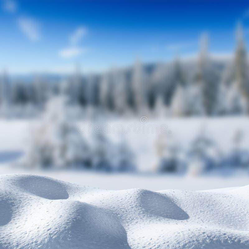 Fondo del invierno con una pila de nieve y de paisaje erosionado Árbol nevado del invierno mágico Feliz Año Nuevo cárpato foto de archivo libre de regalías