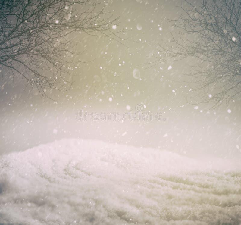Fondo del invierno Nevado imágenes de archivo libres de regalías