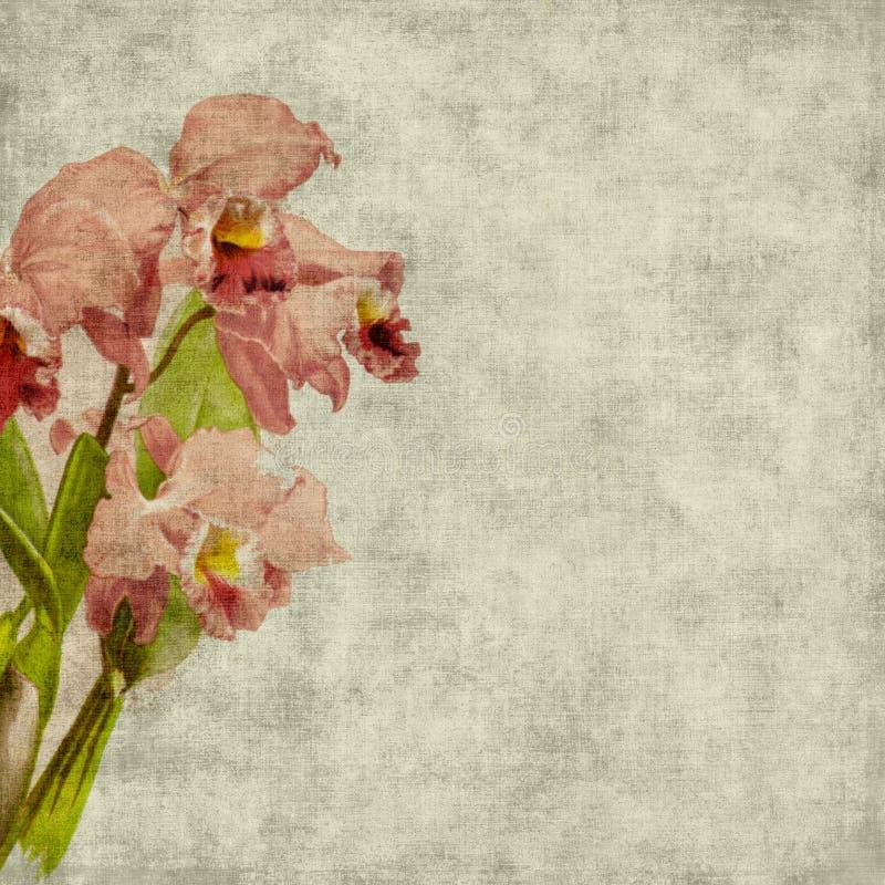 Fondo del libro de recuerdos de la flor de la vendimia ilustración del vector