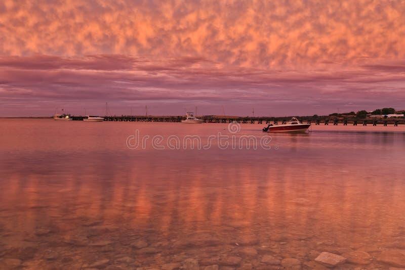 Fondo del mar rayado del rosa de la bahía del SA foto de archivo