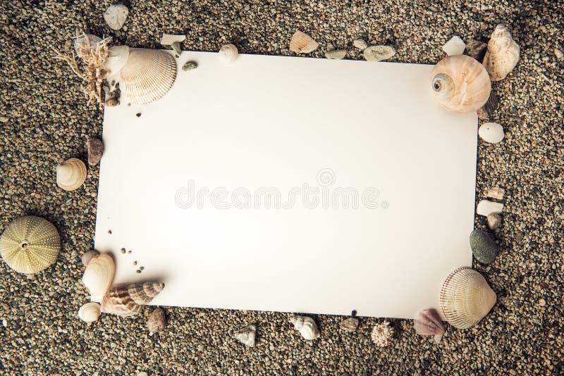 Fondo del marco de la cáscara del océano con el Libro Blanco imagen de archivo libre de regalías