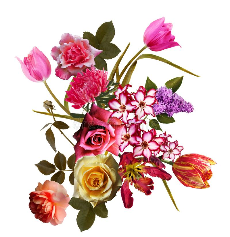 Fondo del modelo de flores del ramo foto de archivo