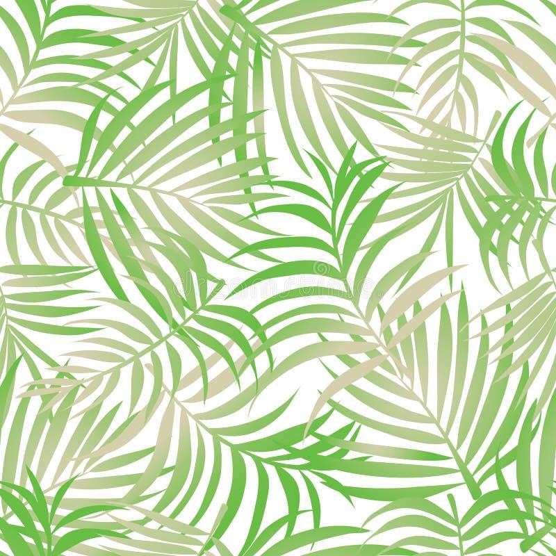 Fondo del modelo de las hojas de palma ilustración del vector