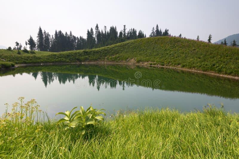 Fondo del noroeste pacífico de Washington State Hiking Climbing Landscape Waterscape fotografía de archivo libre de regalías