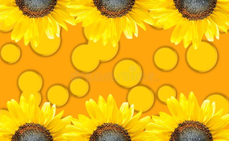 Fondo del oro con los círculos amarillos foto de archivo libre de regalías