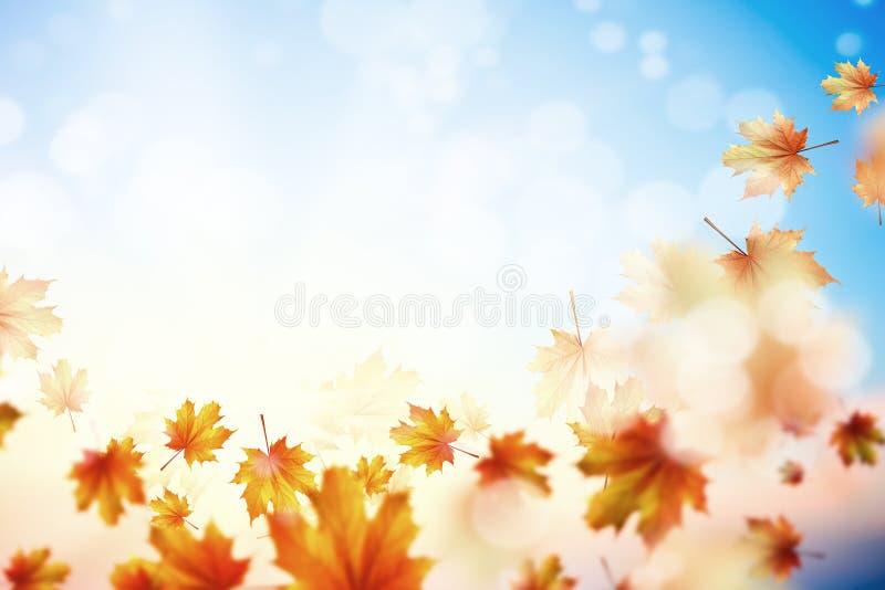 Download Fondo del otoño imagen de archivo. Imagen de limpio, anaranjado - 41901855