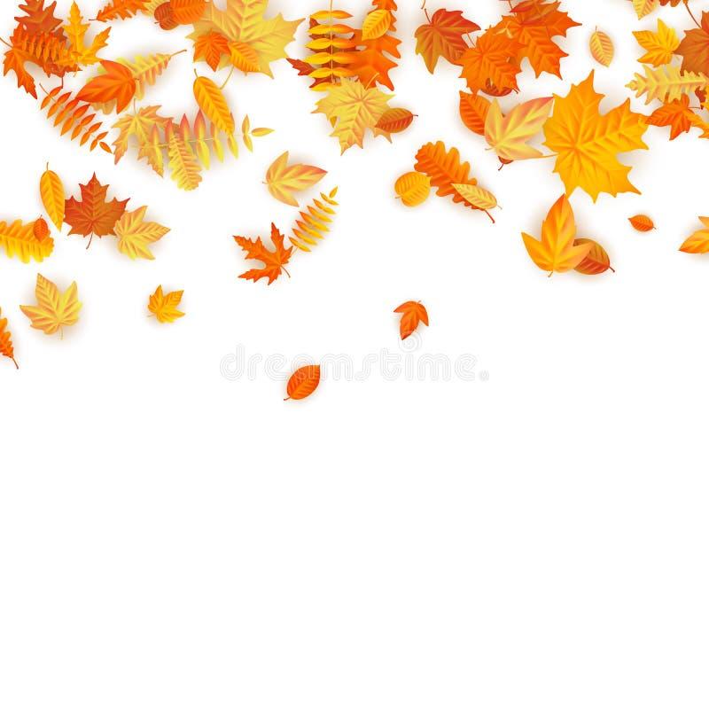 Fondo del otoño con el arce, el roble y otros de oro hojas EPS 10 ilustración del vector