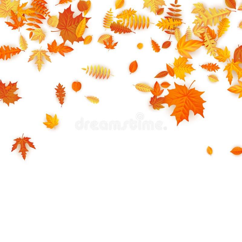 Fondo del otoño con el arce, el roble y otros de oro hojas EPS 10 stock de ilustración