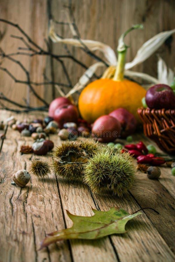 Fondo del otoño con la fruta fotografía de archivo