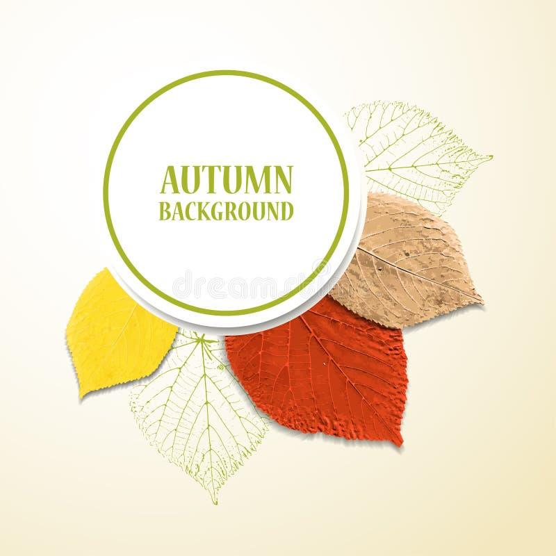 Fondo del otoño con las hojas stock de ilustración