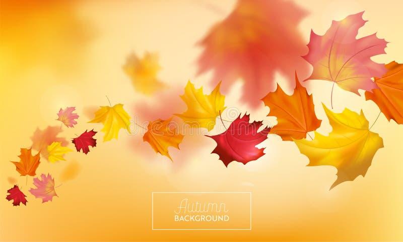 Fondo del otoño con las hojas de arce rojas y amarillas Plantilla estacional del diseño de la caída de la naturaleza para la band libre illustration