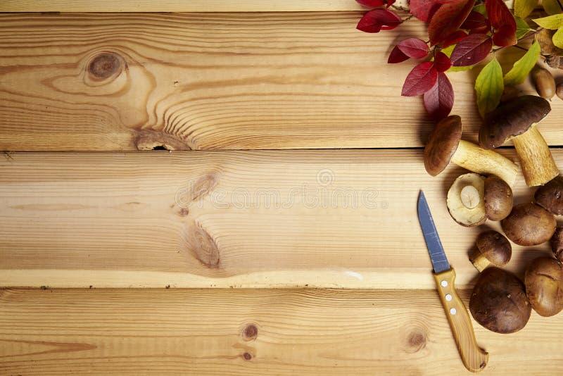 Fondo del otoño con las hojas y los conos de las setas en una tabla de madera vieja imágenes de archivo libres de regalías