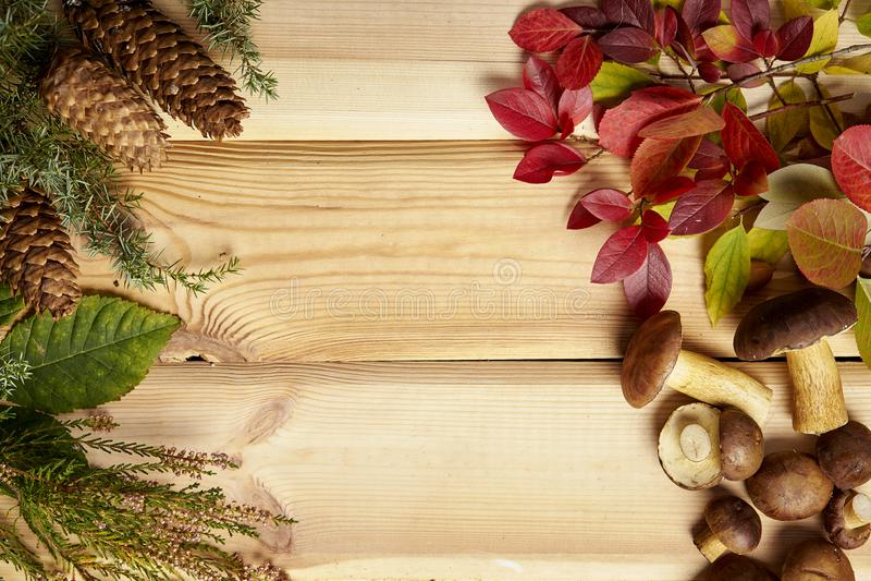 Fondo del otoño con las hojas y los conos de las setas en una tabla de madera vieja foto de archivo