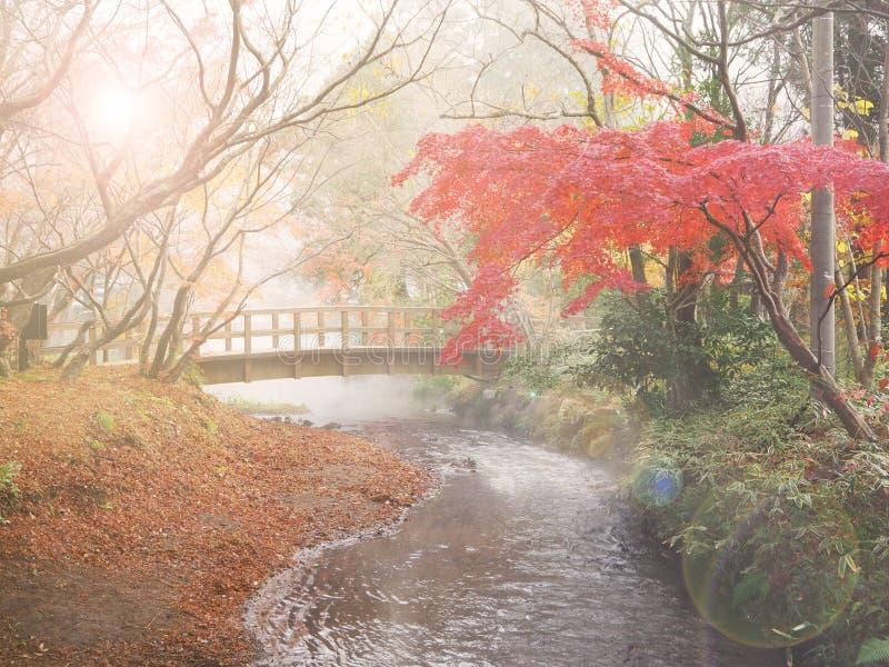 Fondo del otoño de la falta de definición fotos de archivo libres de regalías