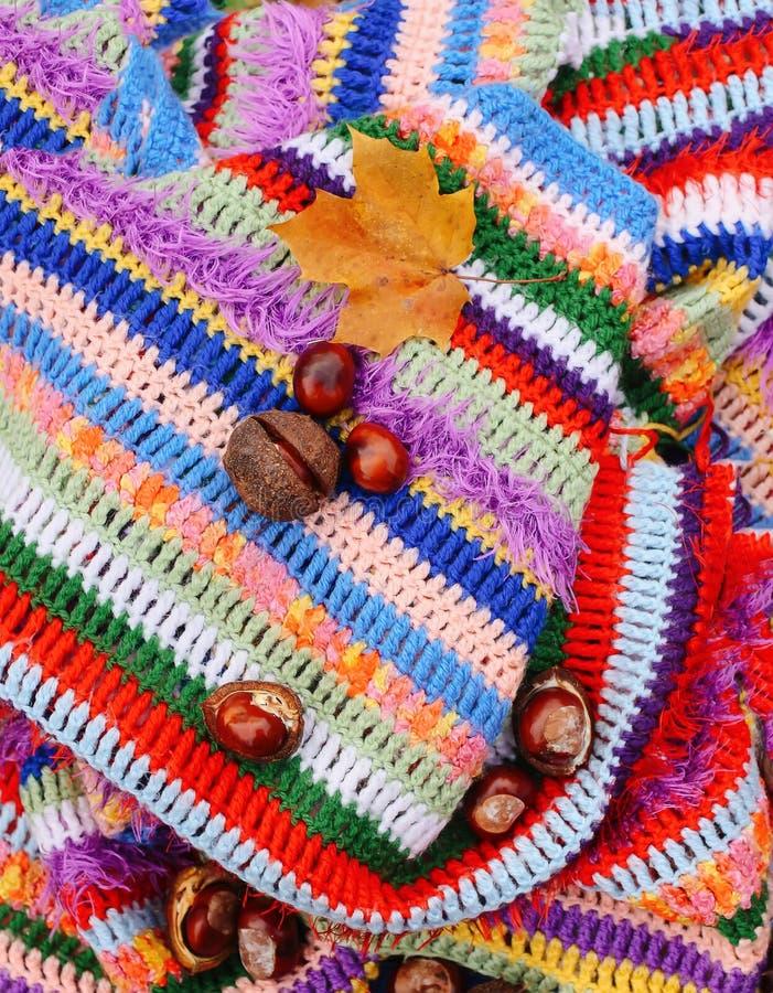 Fondo del oto?o Castañas de Indias f y hoja de arce en la tela escocesa rayada caliente brillante hecha a ganchillo fotografía de archivo