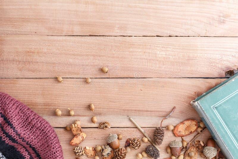 Fondo del oto?o conos, bellotas y pedazos de madera con una chaqueta caliente y un libro viejo en un fondo de madera la visi?n de imagen de archivo libre de regalías