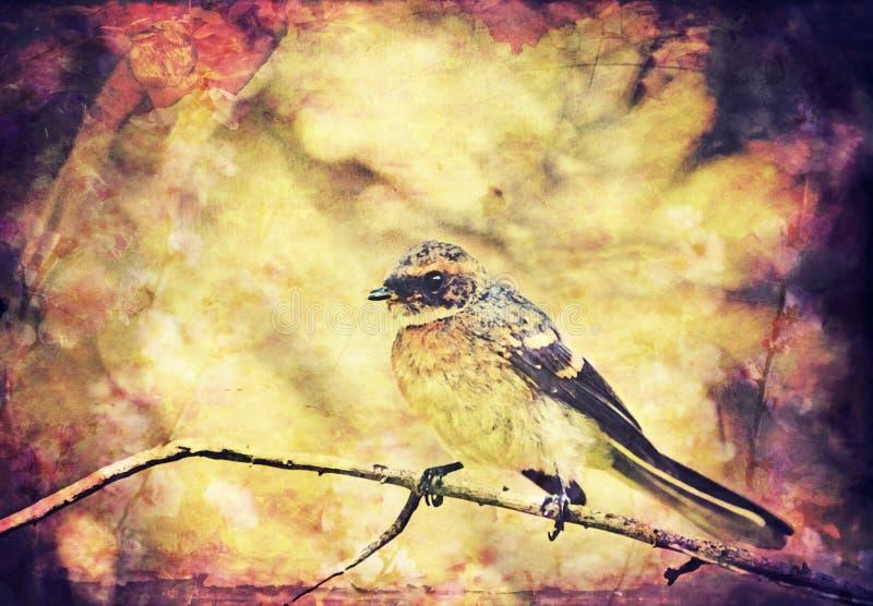 Fondo del pájaro cantante del vintage libre illustration