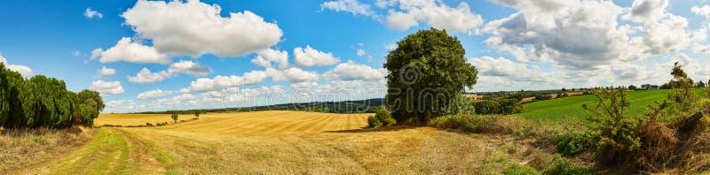 Fondo del panorama del paisaje con el campo y el cielo imagen de archivo libre de regalías