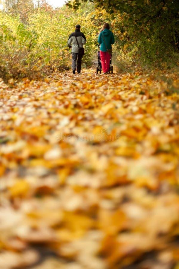 Fondo del parque del otoño fotografía de archivo