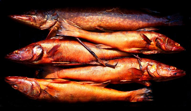 Fondo del pesce essiccato dorato del fumo pesca immagini stock libere da diritti
