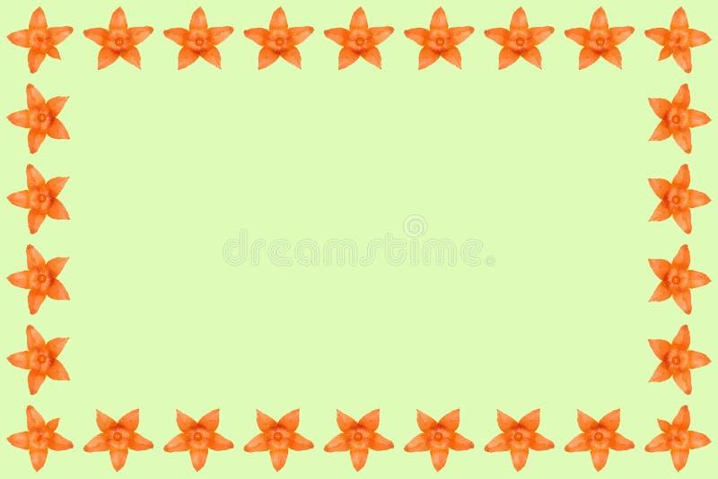 Fondo del physalis, marco y frontera anaranjados, foto del espacio de la copia libre illustration