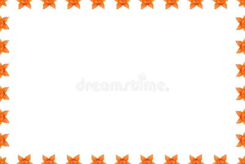 Fondo del physalis, marco y frontera anaranjados, foto del espacio de la copia ilustración del vector