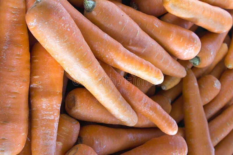 Fondo del primo piano delle carote fotografia stock