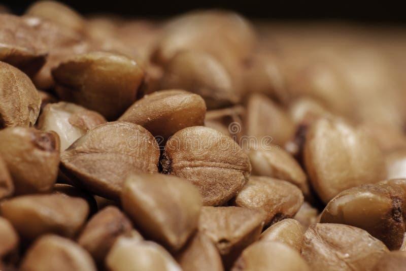 Fondo del primo piano del grano saraceno fotografie stock